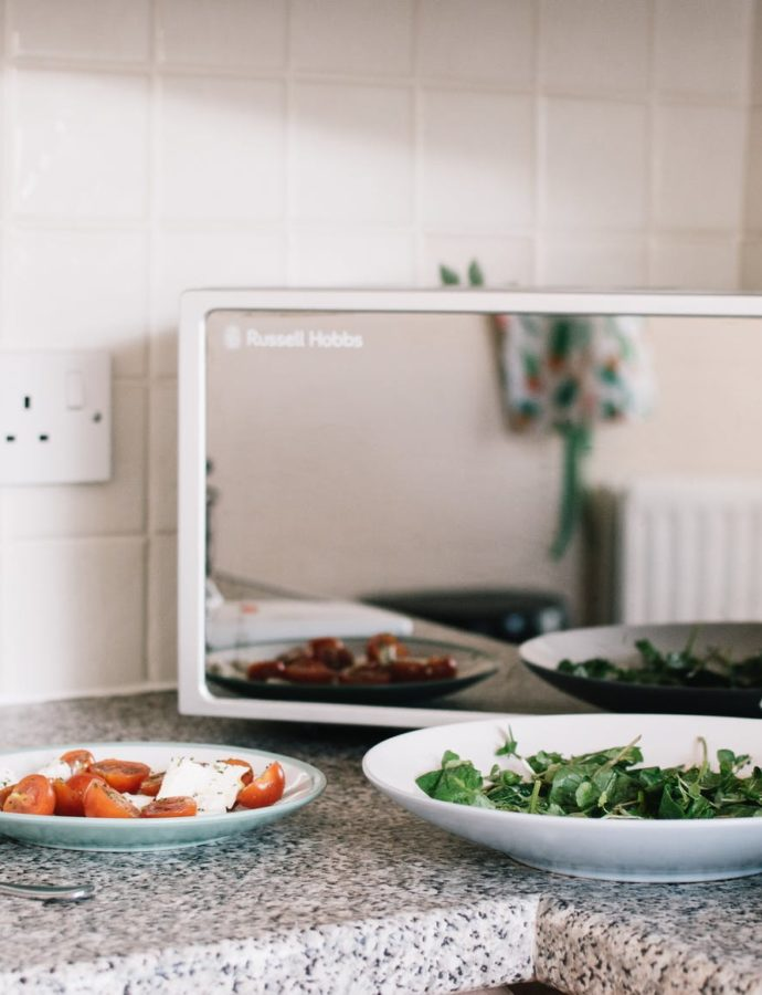 The Best Convection Microwave in 2019